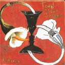 Toad The Wet Sprocket - Dulcinea