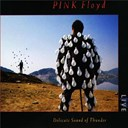 Indent / Pink Floyd - Delicate sound of thunder