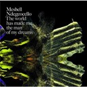 Me'shell Ndegéocello - The world has made me the man of my dreams