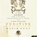 David Gray - Fugitive