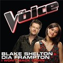 Blake Shelton / Dia Frampton - I won't back down