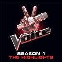 Beverly Mcclellan / Casey Weston / Dia Frampton / Frenchie Davis / Javier Colon / Nakia / Rebecca Loebe / Vicci Martinez / Xenia - The voice:  season 1 highlights