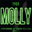 Tyga - Molly