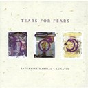 Tears For Fears - saturnine martial and lunatic