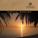 David Arkenstone - Tropical morning