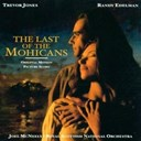 Joel Mc Neely - The last of the mohicans