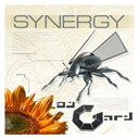 Dj Gard Presents Synergy - Dj gard presents synergy (vol.1 (50 techno, trance & electro anthems))