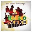 Esteban Copete Y Su Kinteto Pacifico - Goza con mi Bambasongo