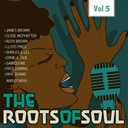Bobby Day / Clyde Mcphatter / Ernie K-Doe / Fats Domino / Faye Adams / Jackie Wilson / James Brown / Lavern Baker / Lee / Little Richard / Price Lloyd / Ray Charles / Ruth Brown / Sam Cooke / Shirley / Solomon Burke - Roots of soul, vol. 5