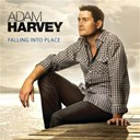 Adam Harvey - Falling into place