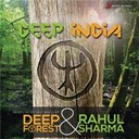 Deep Forest / Rahul Sharma - Deep india