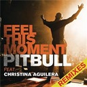 Pitbull - Feel this moment remixes