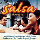 """Celia Cruz / Diego Pelaez / Elvis Crespo / Gloria Estefan / Israel López """"Cachao"""" / Ita / Orlando Poléo / Orquesta De La Luz / Oscar D'león / Ray Barretto / Rubén Blades / Tito Puente / Willie Colón - Chaleur salsa"""