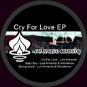 Luis Armando / Nicodemus - Cry for love ep