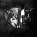 Dust-Theority - Wolves
