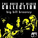 Big Bill Broonzy - The hues of blues collection, vol. 10