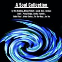 Aretha Franklin / Arthur Conley / Barbara Lewis / Eddie Floyd / Joe Tex / Otis Redding / Percy Sledge / Sam & Dave / The Bar-Kays / Wilson Pickett - A soul collection