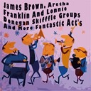Aretha Franklin / Bo Diddley / Carl Perkins / Chuck Willis / James Brown, The Famous Flames / Johnny Burnette / Lee / Shirley / The Cadets / The Drifters / The Lonnie Donegan Skiffle Group - James brown, aretha franklin and lonnie donegan skifffle groups (and more fantastic act's)
