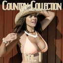 Johnny Cash - Country collection, vol.1 - johnny cash