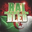 Abdou / Bilal / Boukhana / Cheb Noufel / Cheb Samir / Dj / Ghazi / Hasni Sghir / Houari Dauphin / Kadirou / Kamel Nghir / Med Rock / Nasro / Reda / Younes - Rai made in bled