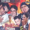 Abdou / Bilal / Dj Souhil / Houari Dauphin / Nasro / Reda / Sonia - Studio redson all stars, vol. 2