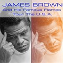 James Brown / The Famous Flames - James brown and his famous flames tour the u.s.a. (live)