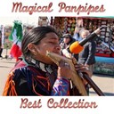 Fly Project - Magical panpipes
