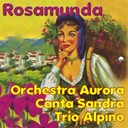Orchestra Aurora / Sandra / Trio Alpino, Orchestra Aurora - Rosamunda