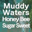 Muddy Waters - Honey bee   sugar sweet (original artist original songs)