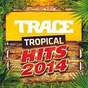 Arielle T / Axel Tony / Bamboolaz / Dj Jairo / Fanny J / Jowell / Juan Magan / K-Reen / Kalash / Kim / Kymai / Layanah / Leslie Grace / Lynnsha / Marvin / Methi's / Orlane / Paille / Randy / Slai / Stony / Toby Love / Warren / Wisin & Yandel - Trace tropical hits 2014