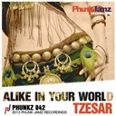 Tzesar - Alike in your world
