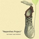Kurt Bauer Paul Mimlitsch - Nepenthes project