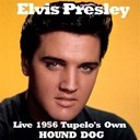 "Elvis Presley ""The King"" - Hound dog (live 1956, tupelo's own)"