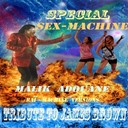 Malik Adouane - Special sex-machine: tribute to james brown (raï-machine versions)