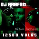 Dj Arafat - 12500 volt