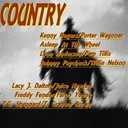 Asleep At The Wheel / Faron Young / Freddy Fender / Johnny Paycheck / Juice Newton / Kenny Rogers / Lacy J. Dalton / Lynn Anderson / Pam Tillis / Porter Wagoner / T G Sheppard / T. Graham Brown / Willie Nelson - Country compilation