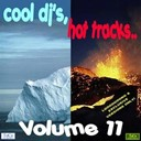 Blinq Inc / Dago Cross / Danio Crespo / Dj Jose / Dj Miller / Gotzone / Jlm / Lizzy / Luna / Maduar / Masta Vs Dos Uno / Y Scream - Cool dj's, hot tracks - vol. 11