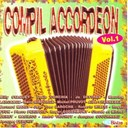 Albert Hennebel / Bernard Marly / Claude Geney / Jean Yves Laroche / Jo Destree / Louis Corchia / Maurice Larcange / Miche / Michel Pruvot / Pierre Peribois / Rene Ninforge / Roberto Milesi / Roger Eggermont / Roger Fyon / Willy Staquet - Compil accordéon (French Accordion, Vol. 1)