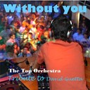 The Top Orchestra - Without you (tribute to david guetta) - single