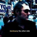 David Gray - The other side