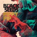 The Black Seeds - Pippy pip