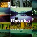 Amon Tobin / Bonobo / Jon Kennedy / Mechanical Me / Pilote - One offs remixes and b sides