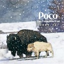 Poco - the forgotten trail