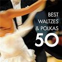 Compilation - 50 Best Waltzes & Polkas