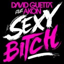 David Guetta - Sexy Bitch