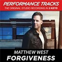 Matthew West - Forgiveness (performance tracks) - ep