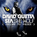 David Guetta - She wolf (falling to pieces) (feat.sia)