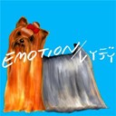 Great3 - Emotion / lady