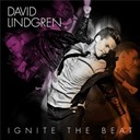 David Lindgren - Ignite the beat