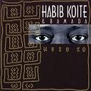 Habib Koité - Muso ko